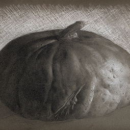 <strong>Pumpkin Study</strong><br>Pumpkin Study<br />